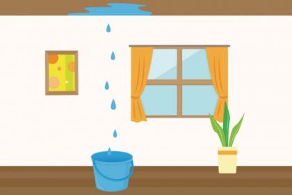 雨漏りの症状について